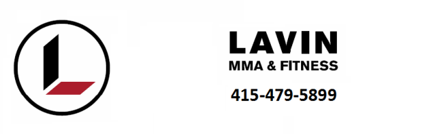 Lavin Mixed Martial Arts Amp Fitness The Best Mixed
